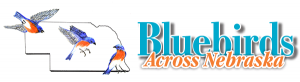 Bluebirds Across Nebraska